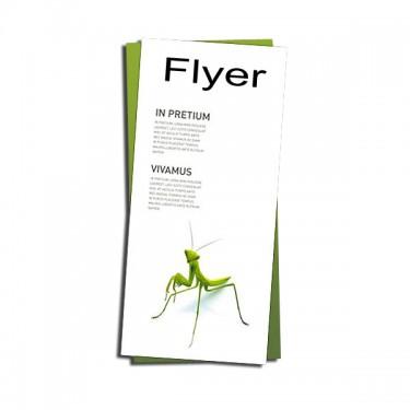 FLYERE